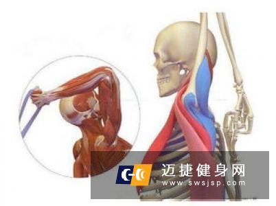 怎么锻炼臀中肌和臀小肌最好?怎么锻炼好臀中小肌呢?
